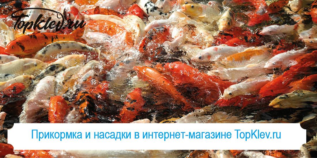 прикормка и насадки рыболовный магазин топклев